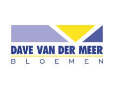 cropped-Logo-Dave-vd-Meer-nov-2012-DIK-aangepast-Curve.jpg